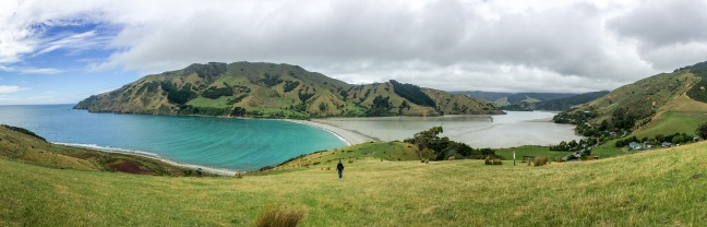 Emily hiking at Cable Bay, South Island, NZ