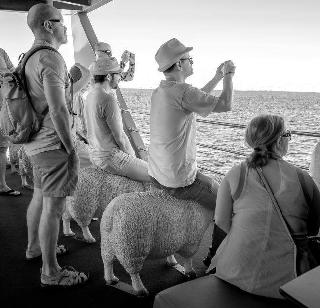 MONA Roma Ferry, Hobart, Tasmania