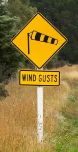 Gusty