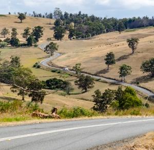 TasmaniaRoad